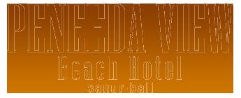 Sanur Hotel Peneeda View Beach Hotel